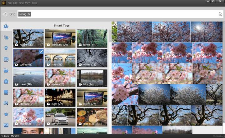 the interface of adobe photoshop elements organizer