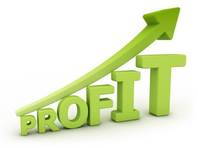 increase profit with netsuit