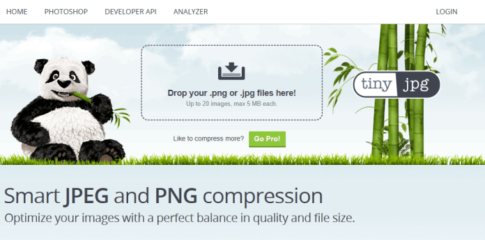Top 5 Best Image Optimizers - High Quality Images at Reduced File Size 4