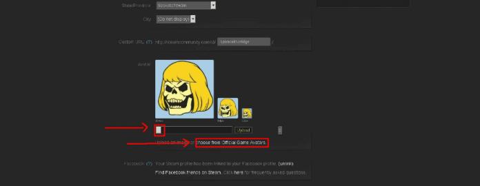 remove Steam Profile Picture