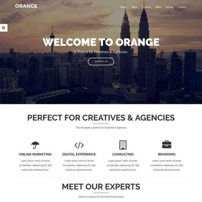 Top 10 WordPress Themes for Startups 9