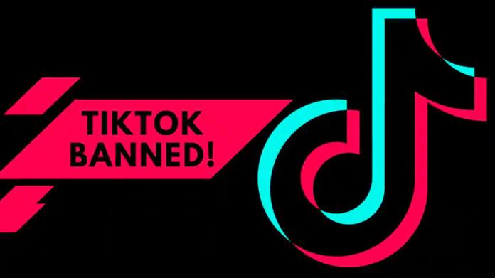 YouTube Shorts: Meet the new rival of TikTok! 1