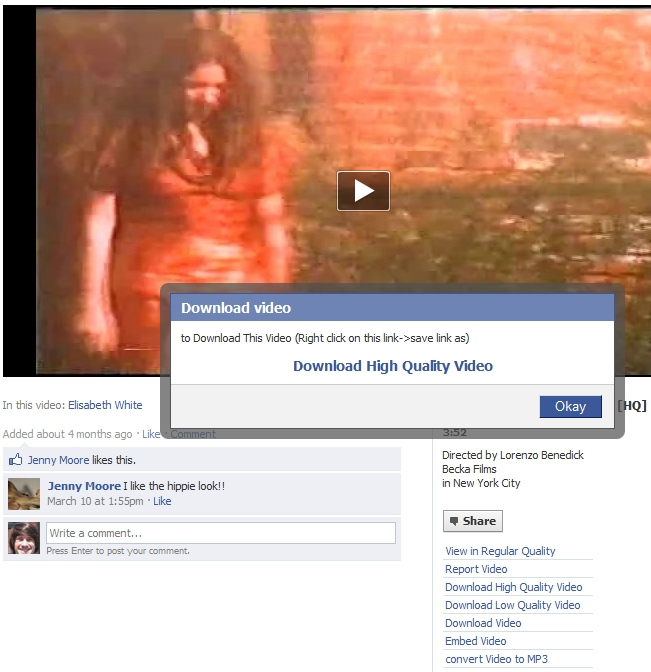 Use Chrome Extension To Download And Embed Facebook Videos