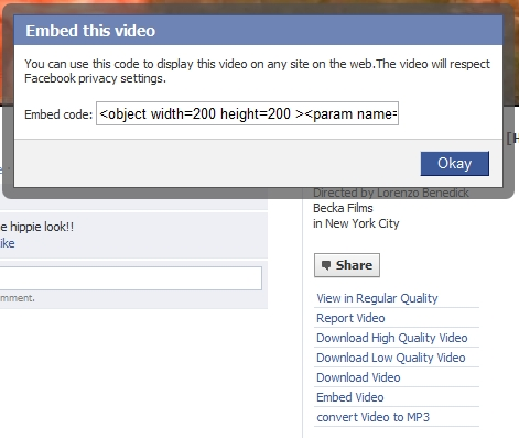 Use Chrome Extension To Download And Embed Facebook Videos | Tech Heavy