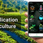 IoT Application in Agriculture: Reshaping The Sector into Smart Farming