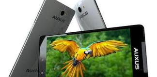iBerry Auxus One review