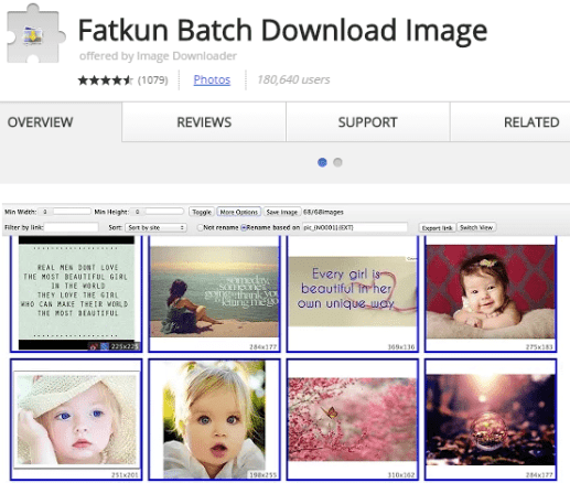 Fatkun Batch Downlaod Image