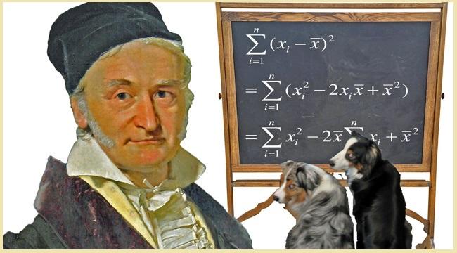Carl Friedrich Gauss