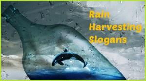 Slogans on Rainwater Harvesting in English