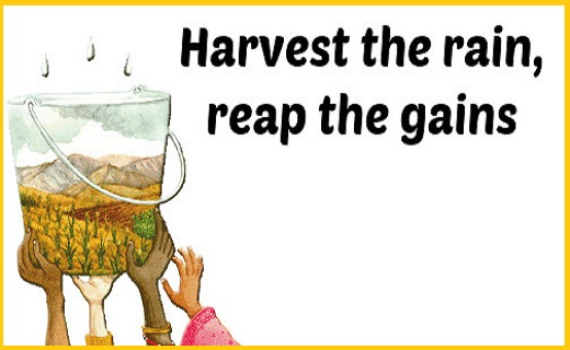 Harvest rainwater to use in difficult times of drought.