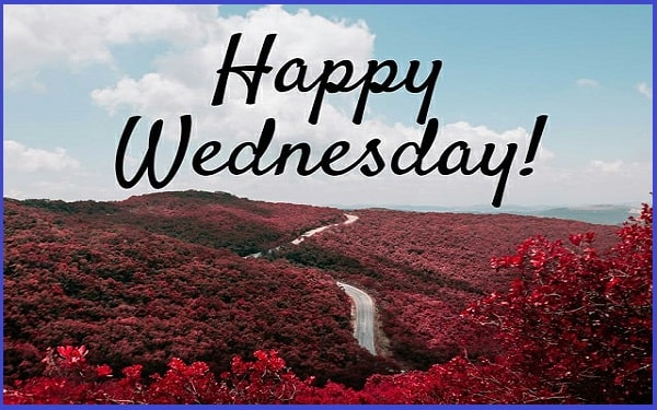 Happy Wednesday Quotes And Sayings