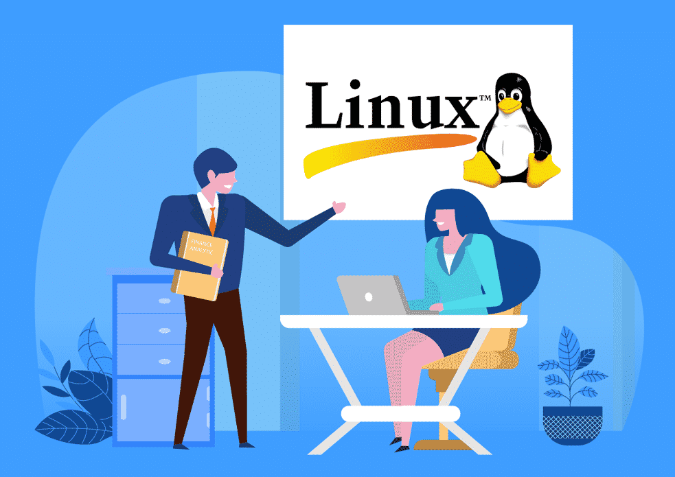 Linux, Linux Consulting