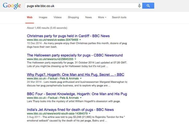 google_site.jpg