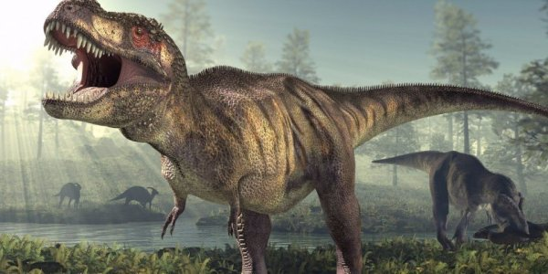 jurassic-park-might-have-gotten-this-one-trait-of-dinosaurs-completely-wrong-1