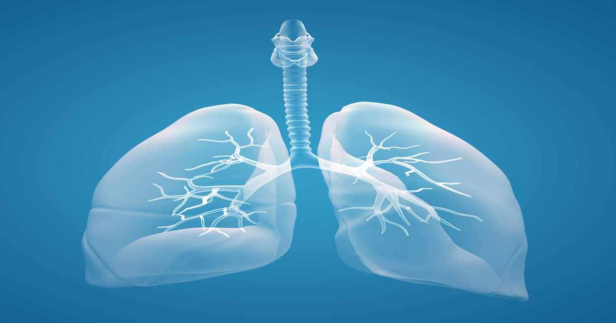 Lung Cancer Awareness Month - Mesothelioma