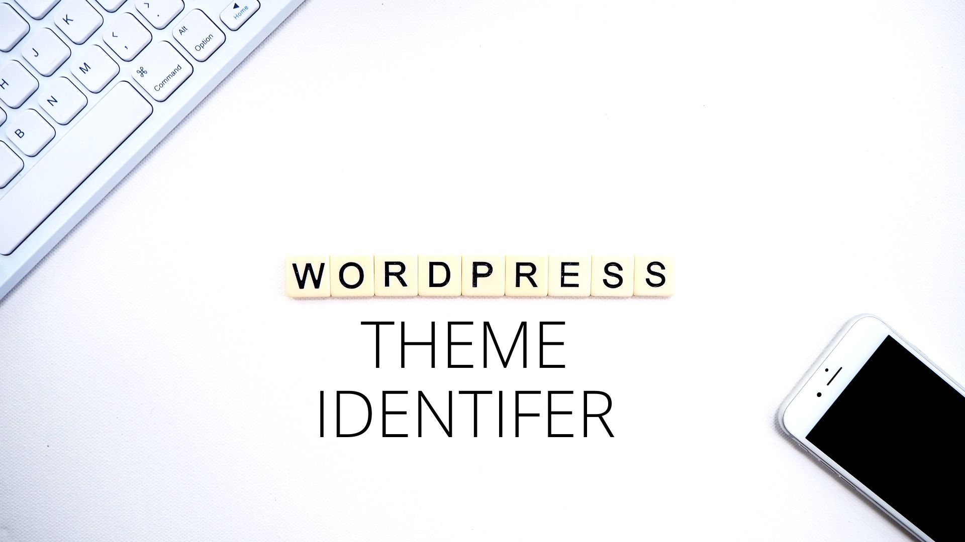 wp theme identifier, wp theme detection,WP Theme Identifier: Check Which Wordpress theme is Installed on Any Website