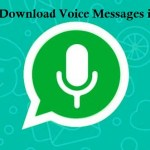 How to save and download WhatsApp voice messages in iPhone
