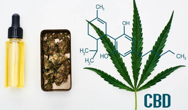 How to Identify the Very High Quality Required CBD Oil