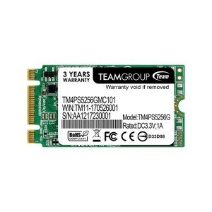 Team TM4PS5256GMC101 256GB M.2 SATA III 2242