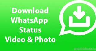 How to save WhatsApp status video on android phone