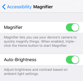 Magnifier and Auto-Brightness