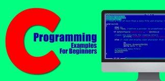 C Programming Examples for Beginner