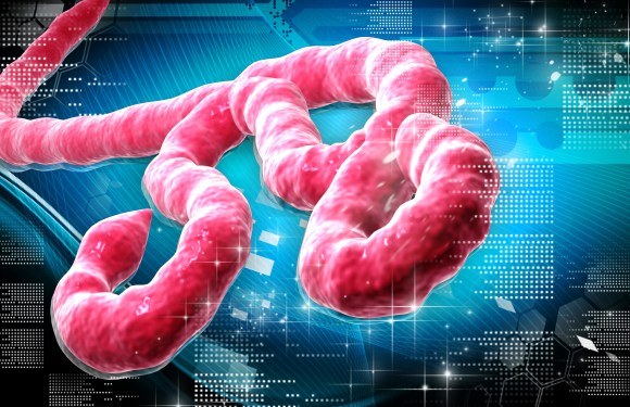 Mobile Money Transfer and Bitcoin to fight Ebola in Sierra Leone