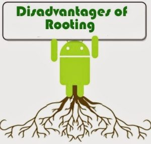 disadvantages of rooting