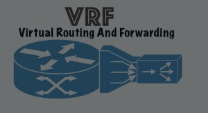 Virtual Routing and Forwarding Network