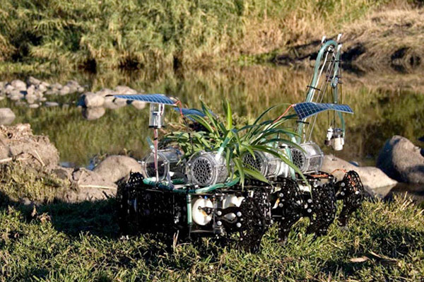 cyborg robot plant gilberto esparza mexico art