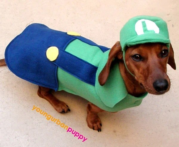 Mario and Princess Peach Dog Cosplay