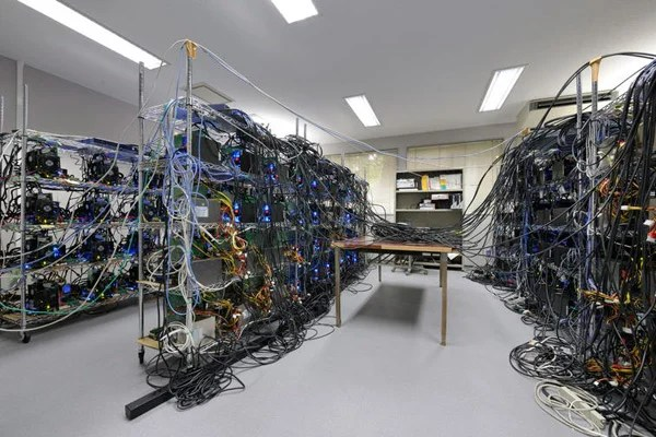 japan supercomputer cable squid nightmare