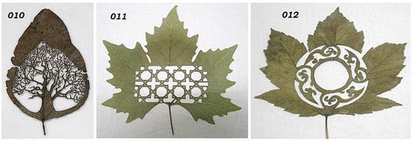 leaf-art-tree
