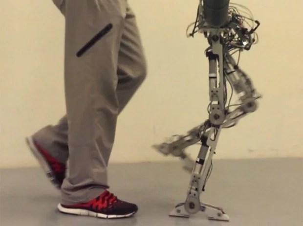 amber humanoid robot walks 620x464