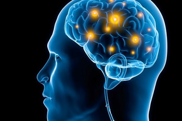 디지털 시대가 당신의 두뇌에 나쁜 이유
