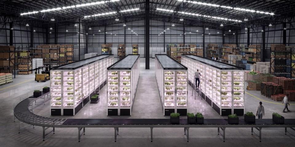 스마트팜 혁신 이끄는 인팜 (Infarm), 클라우드 기반 재배농장 확장