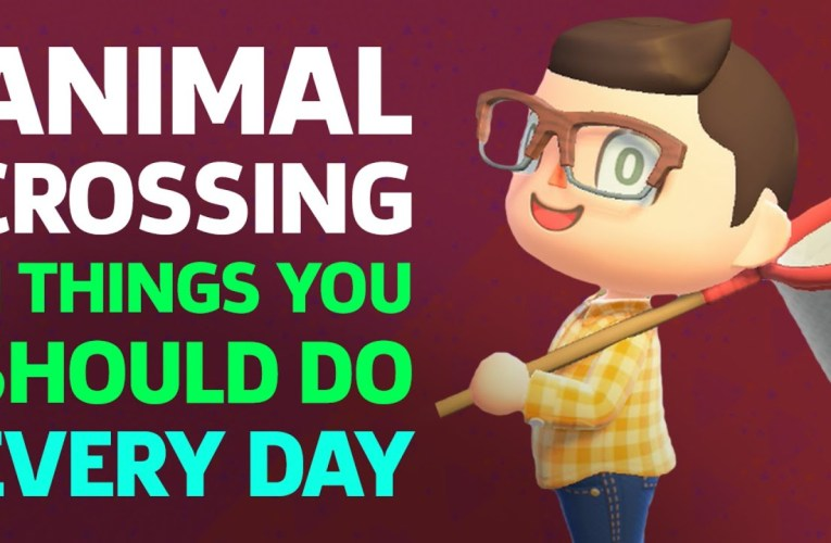 11 Things You Should Do Everyday In Animal Crossing: New Horizons