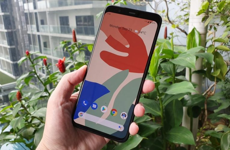 Other rumors say Google Pixel 5 will have a medium-range processor