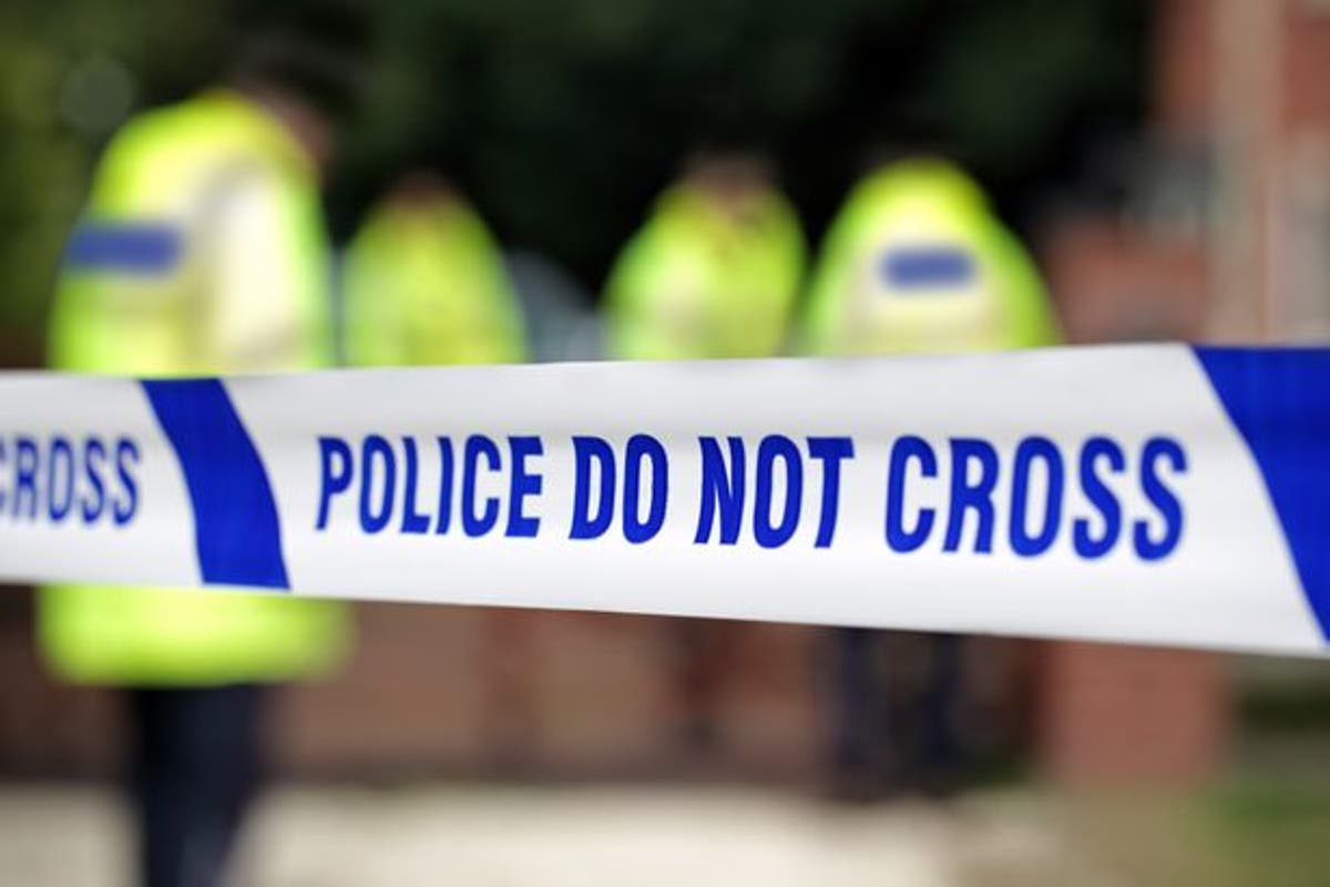 Four teenage boys arrested as girl, 16, 'fights for her life' after double stabbing in West Norwood