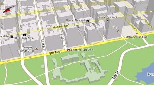 Image showing 3D view in Google Maps