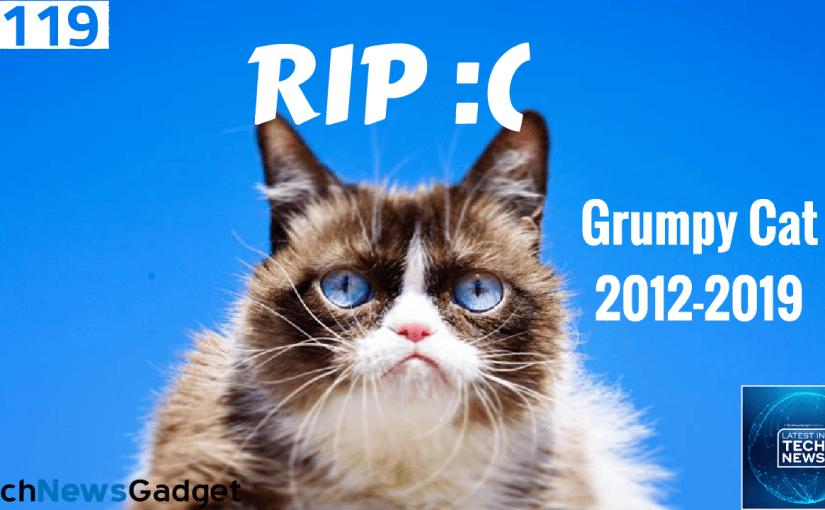 #119 Farewell Grumpy Cat