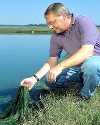 Algae Sampling (ARS/USDA)