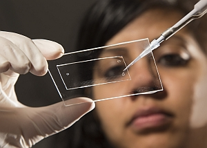 Lab-on-a--chip device (Brigham Young University)