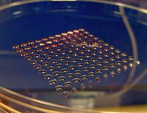 3D printed stem cells (Heriot-Watt University)