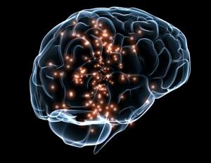 Brain networks illustration