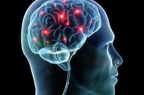 Brain synapses illustration
