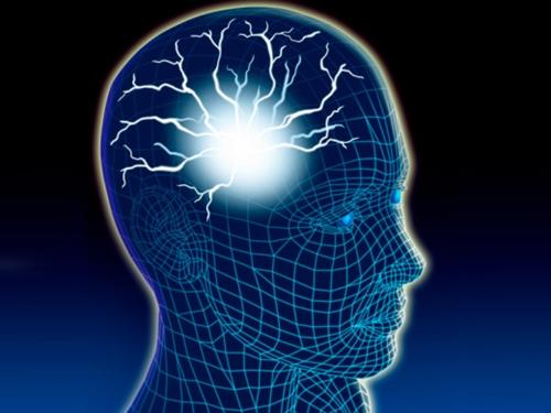 Nerve cells in brain illustration