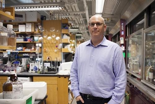 Merck Licensing Harvard Cancer Drug Molecules | Science and Enterprise