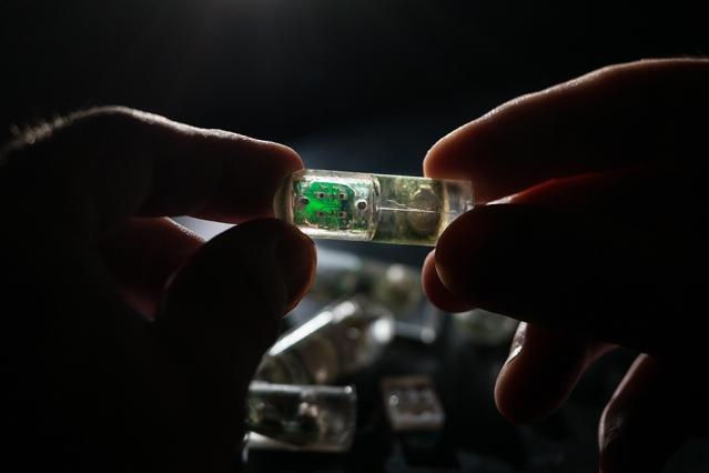 Ingestible gut sensor capsule