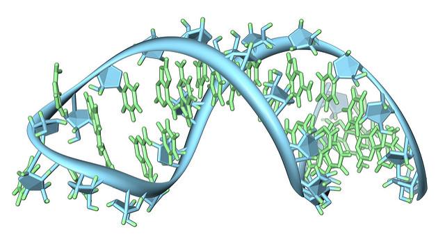 RNA strand illustration
